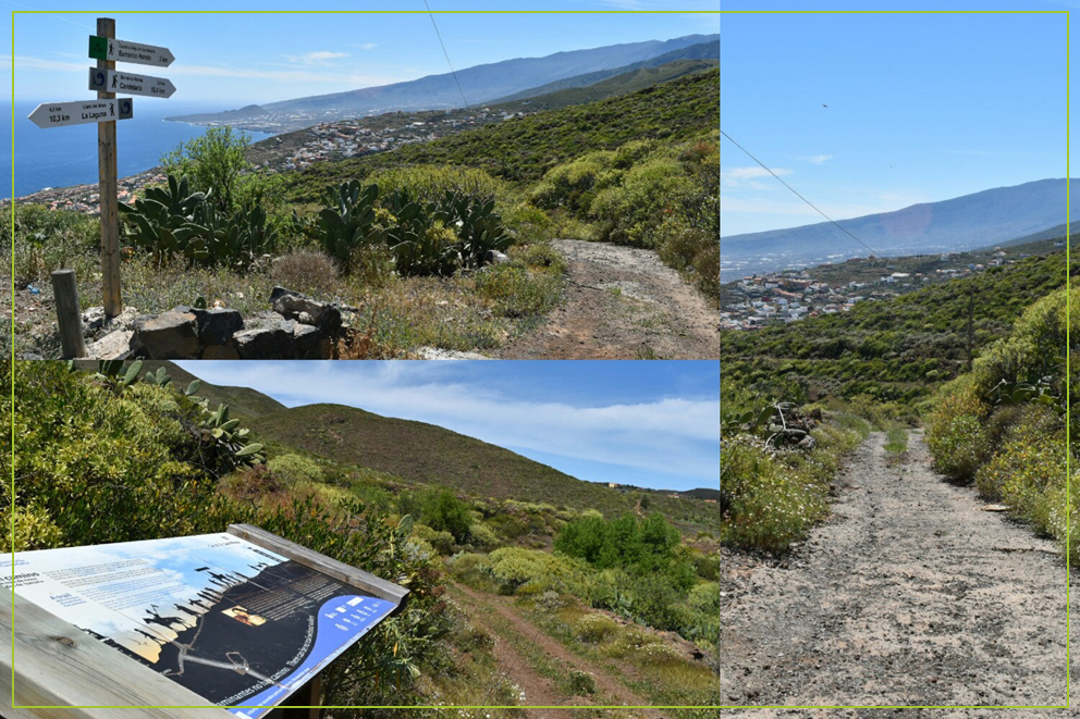 Camino viejo de Candelaria-OK