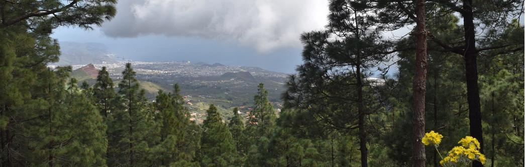 panoramica-mirador-montaña-grande-1