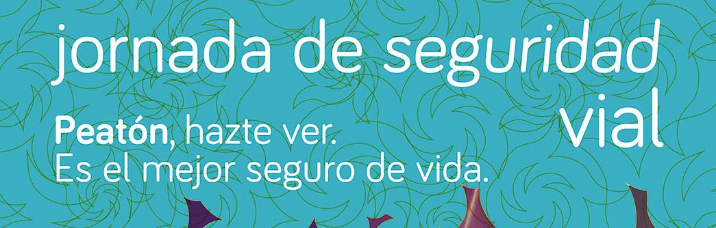 noticia-SEGURIDAD-VIAL-6-03-2017-1