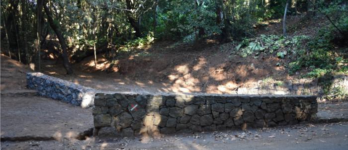 barranco-bosque-adelantado-2