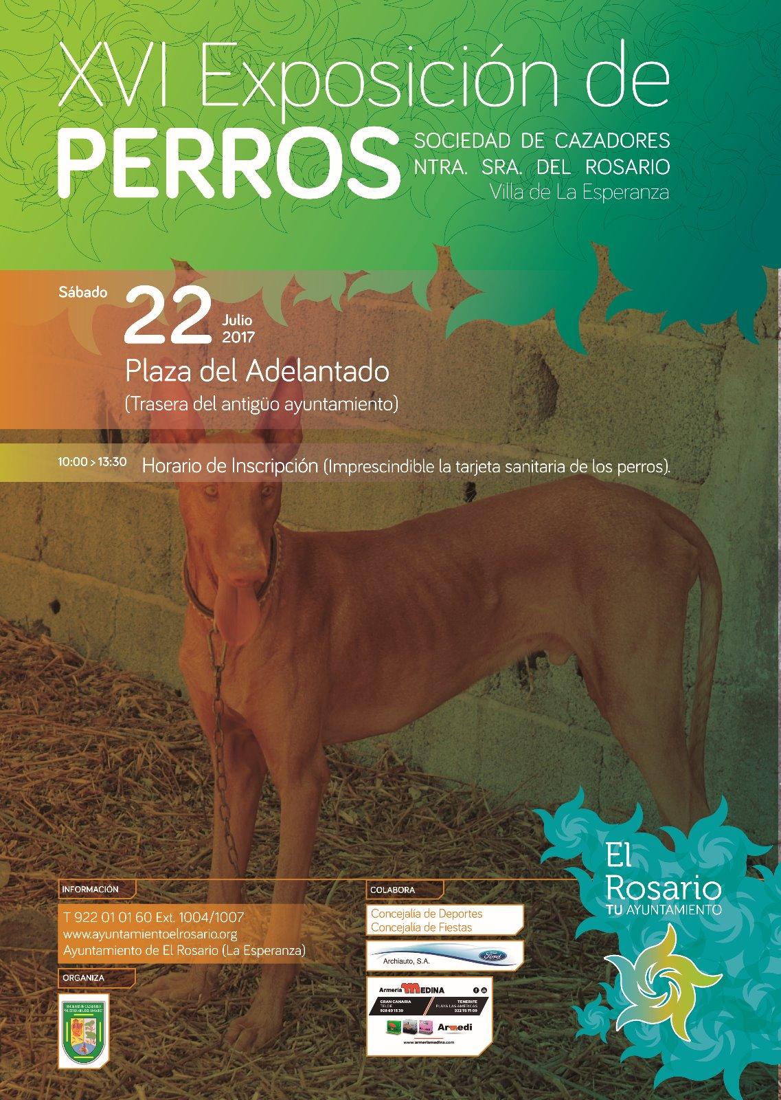 XVI Exposcicion Perros de Caza