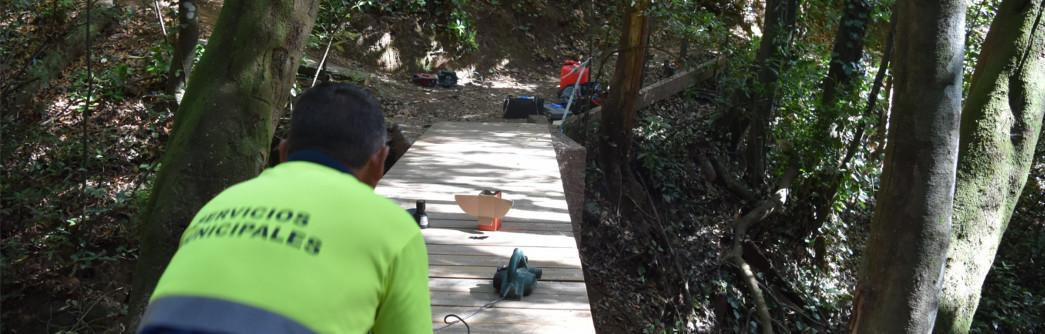 reparacion-puente-bosque-1