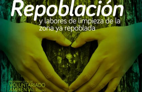 repoblacion-forestal-3