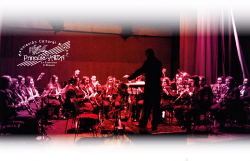 concierto-navidad-acm-3