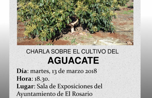 charla-cultivo-aguacate-3