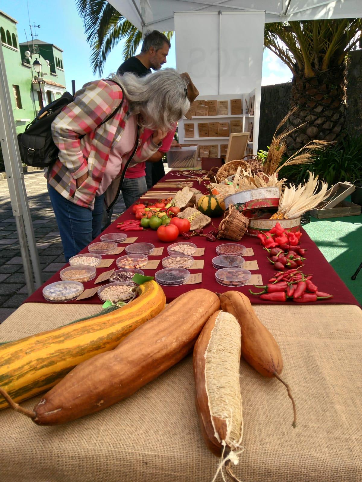 IX Feria de Semillas Tradicionales (5)