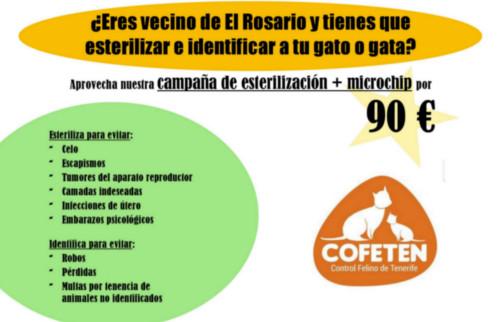 proyecto-cofeten-3