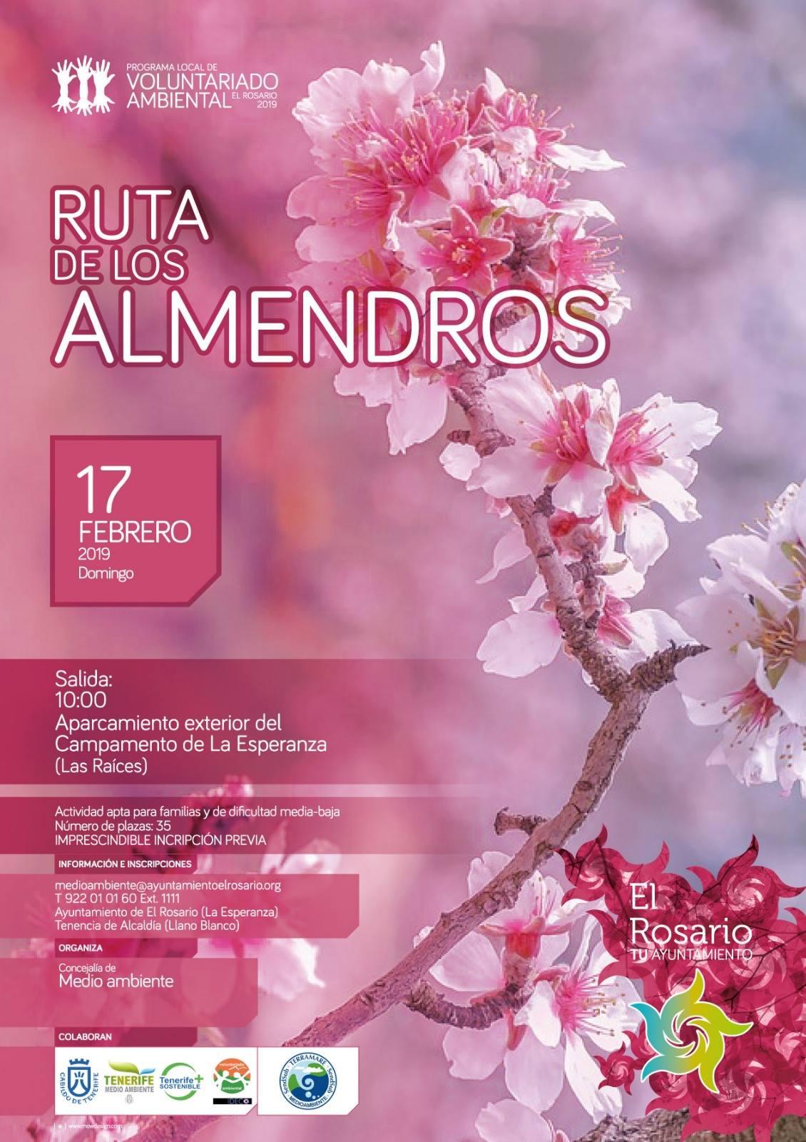 Cartel Ruta Almendros en flor