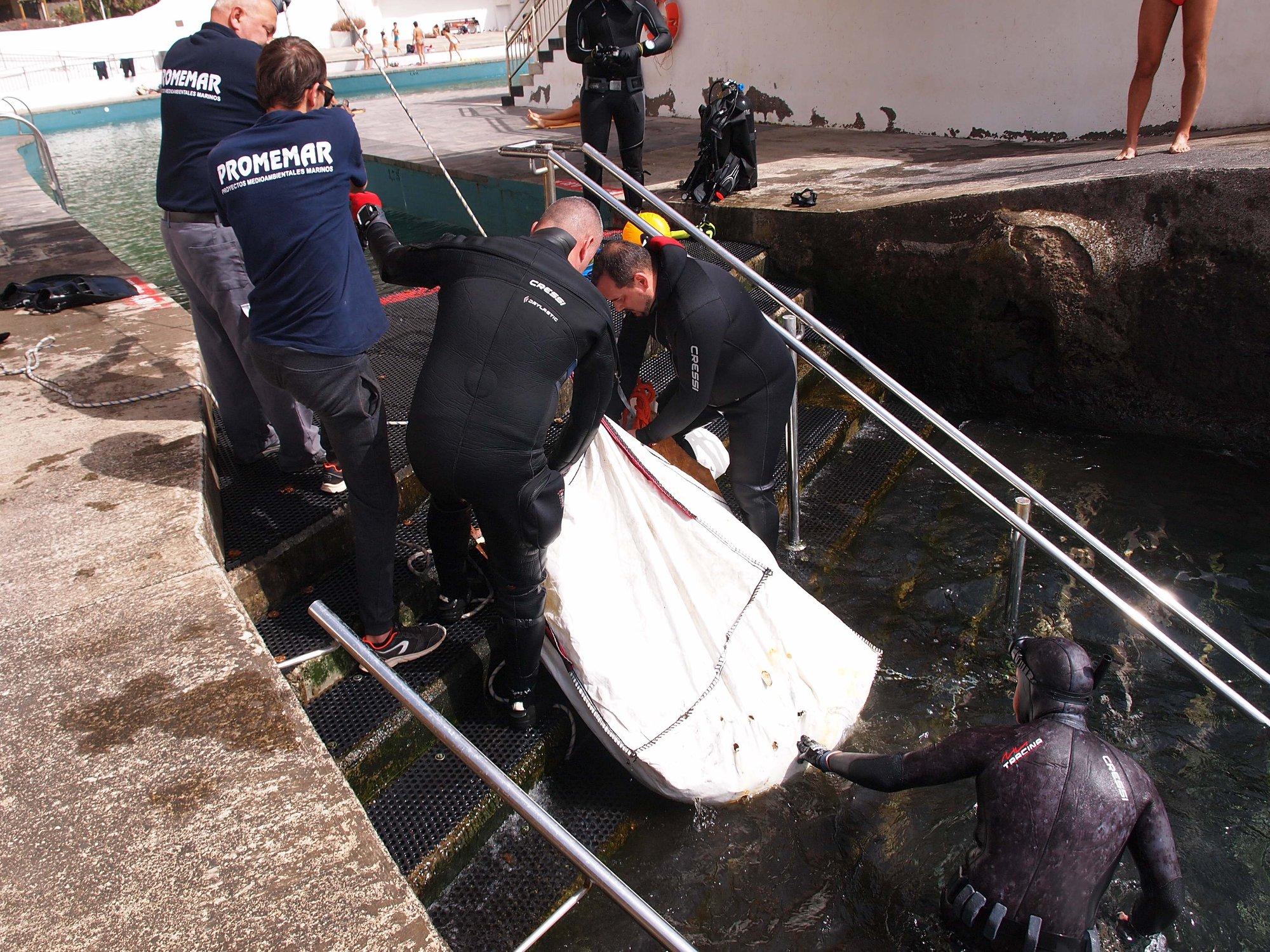 Limpieza acuática Tabaiba (1)