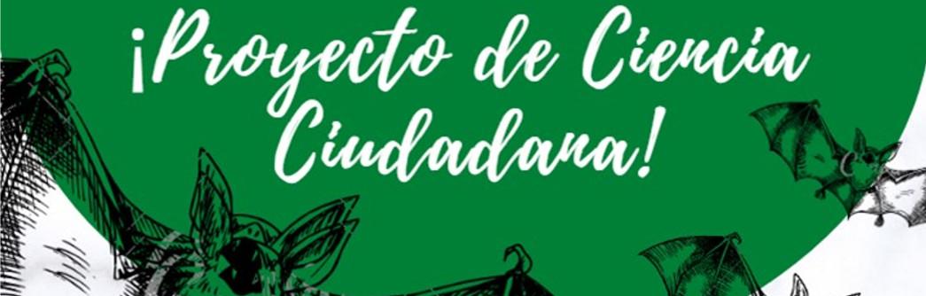 charla-online-murcielagos-1