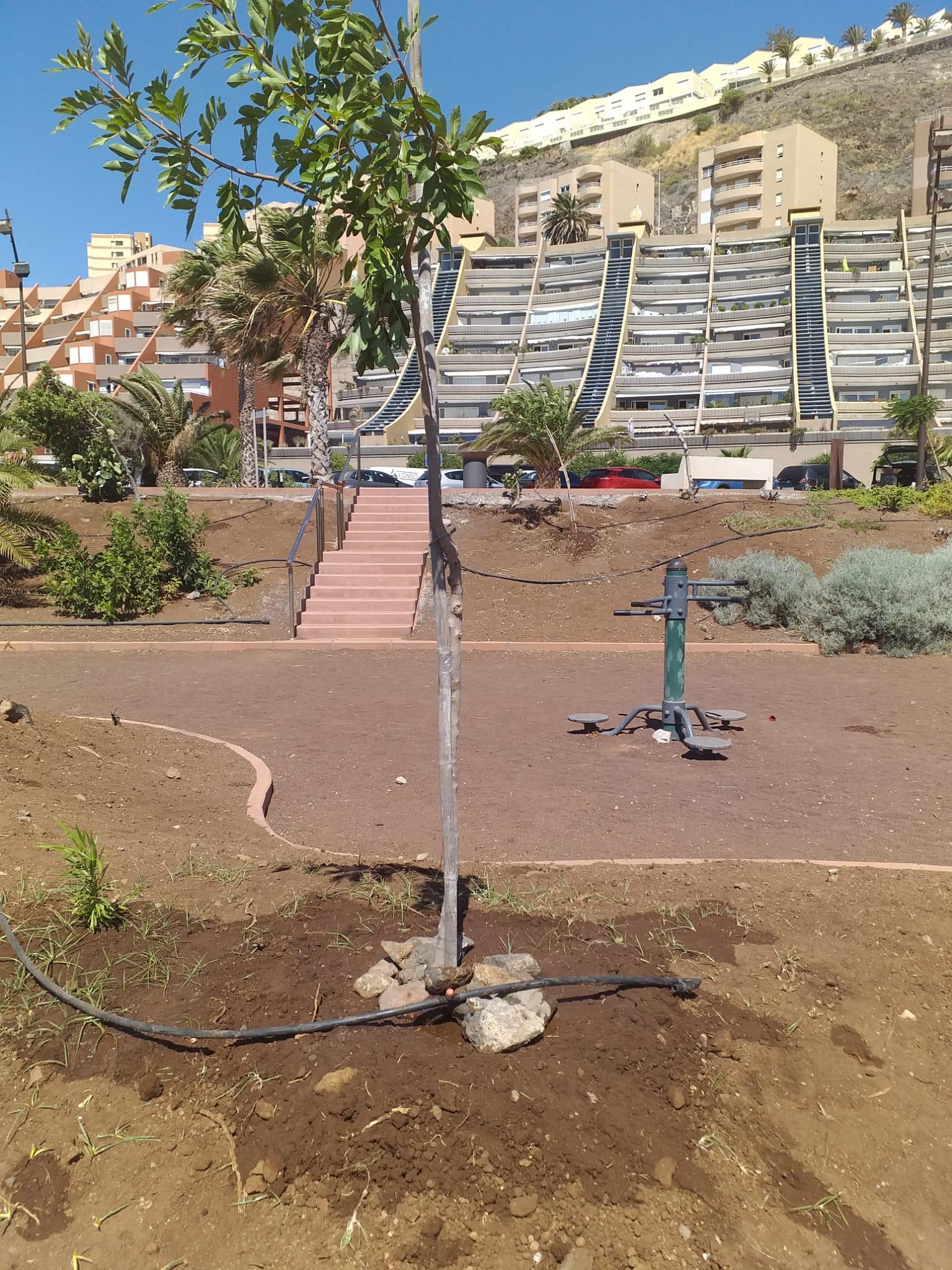 Mejora jardines parque Guadamojete (4)