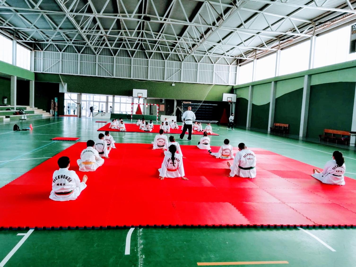 Entrenamiento Poomsae Taekwondo en Lomo Pelado (3)