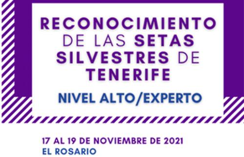 curso-extension-universitaria-2021-3