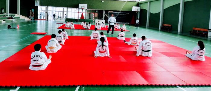 entrenamiento-taekwondo-2