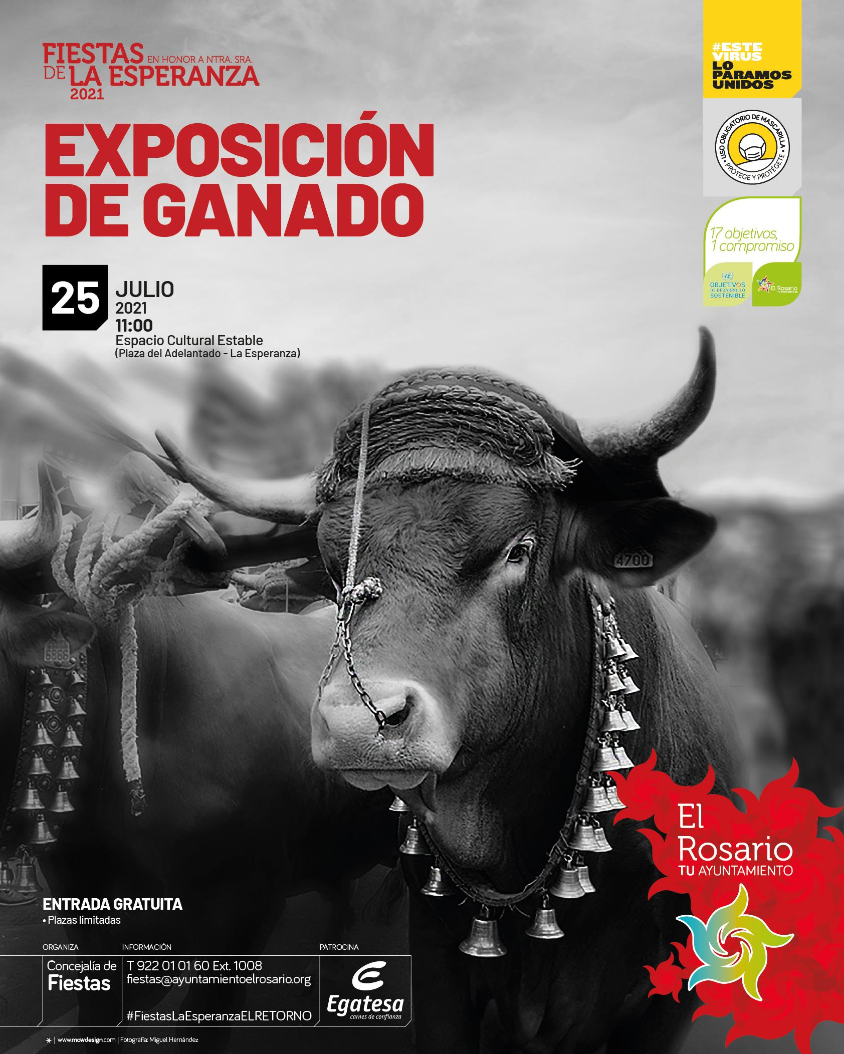EL_ROSARIO-FERIA-GANADO-20210730-CARTEL_A3-20210713-01af-redes
