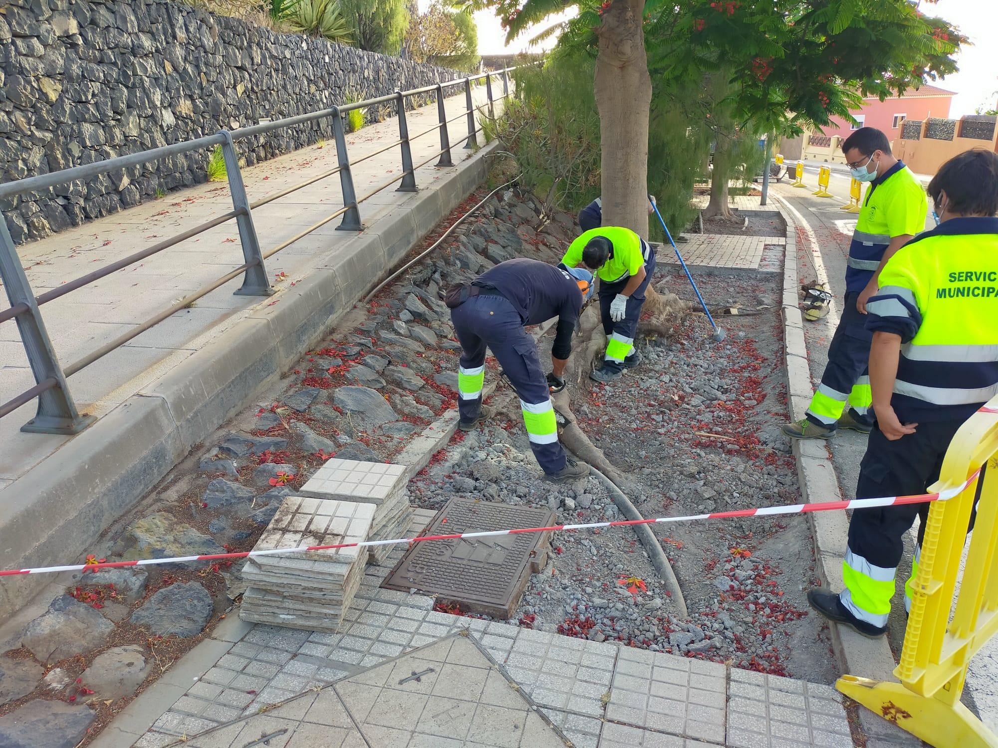 Reforma aceras camino Candelaria (1)