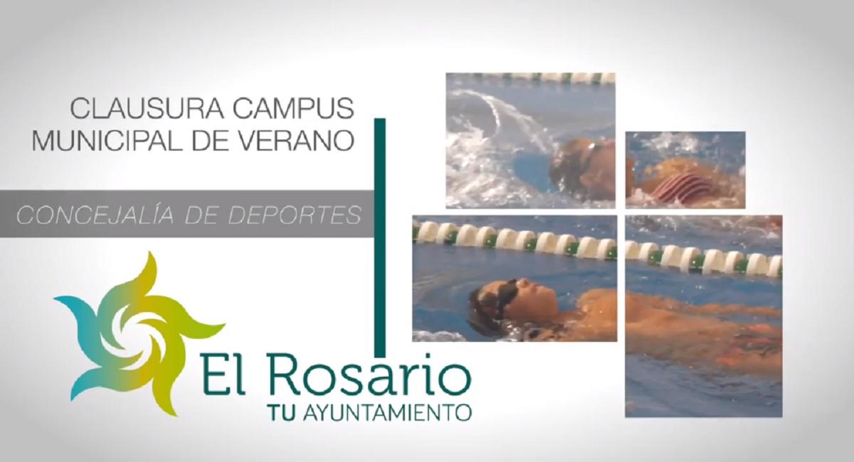cursillo-natacion-video